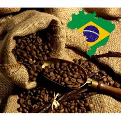 Concentré Café du Brésil - Solana