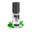 E-liquide Ice mint - Salt E-vapor