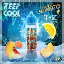 PURIS ICED 50ML - TWELVE MONKEYS