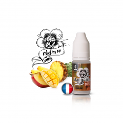 E-Liquide Rebel Manganas - 10ml - Flavour Power