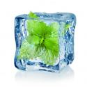Arome Menthe Glaciale concentré Inawera