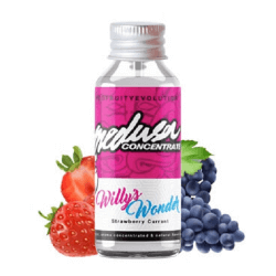 Concentré willy's wonder 30ml - Medusa juice