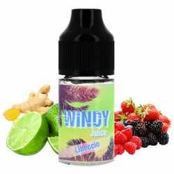 Concentré Libeccio 30ml - Windy Juice
